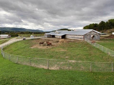 Hobby farm for sale in Saint-Donat, Bas-Saint-Laurent, 91, Avenue du Mont-Comi, 27507994 - Centris