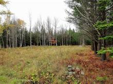 Lot for sale in Ascot Corner, Estrie, Chemin  Bélanger, 24913052 - Centris