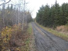 Land for sale in Beauceville, Chaudière-Appalaches, Rang  Saint-Gaspard, 21899110 - Centris