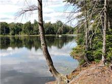 Lot for sale in Wentworth-Nord, Laurentides, Rue  René, 12769882 - Centris