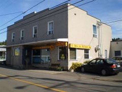 Immeuble à revenus à vendre à Métis-sur-Mer, Bas-Saint-Laurent, 162 - 166, Rue  Principale, 28244543 - Centris