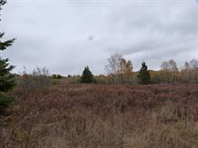 Lot for sale in Baie-Saint-Paul, Capitale-Nationale, 1, Route  362, 26668845 - Centris