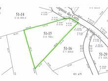 Lot for sale in Sainte-Agathe-des-Monts, Laurentides, Impasse des Cerfs, 22393775 - Centris