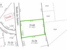 Terrain à vendre à Sainte-Agathe-des-Monts, Laurentides, Montée des Samares, 24997881 - Centris