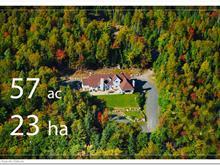 Maison à vendre à Sainte-Adèle, Laurentides, 4145, Chemin du Moulin, 26928848 - Centris