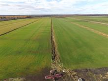 Farm for sale in Lanoraie, Lanaudière, 1, Rue  Saint-Henri, 25497334 - Centris