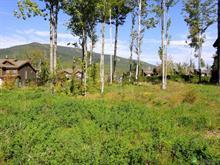 Land for sale in Beaupré, Capitale-Nationale, 20, Rue du Gros-Vallon, 11597442 - Centris