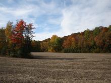 Terrain à vendre à Sainte-Marcelline-de-Kildare, Lanaudière, Chemin des Valois, 20953011 - Centris