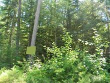 Lot for sale in Rapides-des-Joachims, Outaouais, Chemin du Lac-McConnell, 17168585 - Centris
