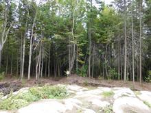 Terrain à vendre à Chicoutimi (Saguenay), Saguenay/Lac-Saint-Jean, 4, Rue  Yves-Thériault, 13825776 - Centris
