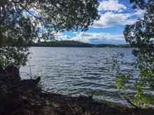 Lot for sale in Bouchette, Outaouais, 172, Chemin de la Carpe, 12918914 - Centris
