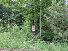 Lot for sale in Denholm, Outaouais, 13, Chemin du Poisson-Blanc, 14845524 - Centris