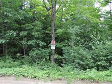 Lot for sale in Denholm, Outaouais, 12, Chemin du Poisson-Blanc, 27550336 - Centris