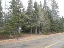 Lot for sale in Lac-Supérieur, Laurentides, Chemin du Lac-Quenouille, 25439221 - Centris