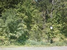 Terrain à vendre à Pontiac, Outaouais, Chemin des Alouettes, 21652906 - Centris
