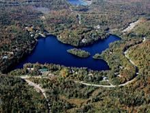 Lot for sale in Saint-Gabriel-de-Brandon, Lanaudière, Chemin du Lac-Hamelin, 24637556 - Centris
