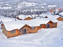 Maison à vendre à Saint-David-de-Falardeau, Saguenay/Lac-Saint-Jean, 107, Rue de Vail, 12267206 - Centris