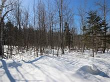 Lot for sale in Frontenac, Estrie, Chemin du Motel-sur-le-Lac, 13157642 - Centris