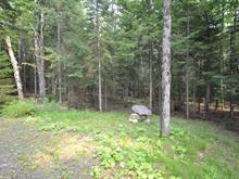 Lot for sale in Sainte-Adèle, Laurentides, Rue des Roitelets, 12313798 - Centris