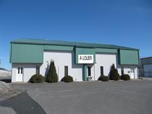 Industrial building for rent in Drummondville, Centre-du-Québec, 1200, Rue  Bergeron, 23298931 - Centris