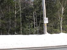 Terrain à vendre à Gaspé, Gaspésie/Îles-de-la-Madeleine, Rue  Eden, 20174413 - Centris