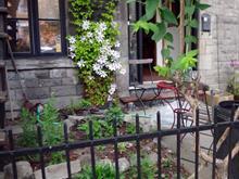 Condo for sale in Le Plateau-Mont-Royal (Montréal), Montréal (Island), 4087, Rue  Cartier, 22887517 - Centris