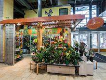 Commerce à vendre à Mercier/Hochelaga-Maisonneuve (Montréal), Montréal (Île), 4445, Rue  Ontario Est, local 1, 20127220 - Centris