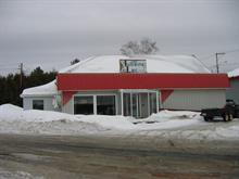 Bâtisse commerciale à vendre à Lac-des-Aigles, Bas-Saint-Laurent, 4, Rue  Sirois, 17753166 - Centris