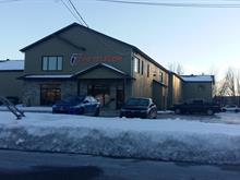 Bâtisse industrielle à vendre à Victoriaville, Centre-du-Québec, 120, Rue  J.-Aurèle-Roux, 25951946 - Centris