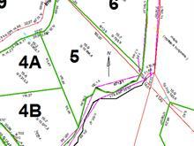 Terrain à vendre à Saint-Donat, Lanaudière, Impasse de l'Eau-Vive, 24004094 - Centris