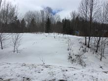 Lot for sale in Lac-Simon, Outaouais, Chemin  Sabourin, 15839608 - Centris
