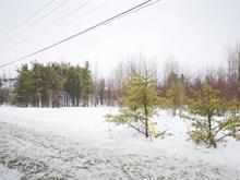 Lot for sale in Rivière-Héva, Abitibi-Témiscamingue, 237, Route  Saint-Paul Sud, 27527603 - Centris