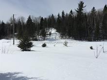 Terrain à vendre à Lac-Kénogami (Saguenay), Saguenay/Lac-Saint-Jean, Rue des Pommiers, 11387186 - Centris