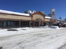Bâtisse commerciale à vendre à Lac-Etchemin, Chaudière-Appalaches, 216, 2e Avenue, 9361352 - Centris