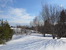 Terrain à vendre à Carleton-sur-Mer, Gaspésie/Îles-de-la-Madeleine, boulevard  Perron, 17160160 - Centris