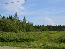 Land for sale in Hope, Gaspésie/Îles-de-la-Madeleine, 6e rg de Saint-Jogues, 23712890 - Centris