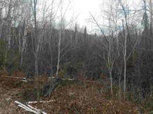 Terrain à vendre à Laterrière (Saguenay), Saguenay/Lac-Saint-Jean, 212, Rue du Vert-Bois, 16705455 - Centris
