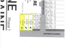Lot for sale in Saint-Lazare, Montérégie, Chemin  Sainte-Angélique, 10984845 - Centris