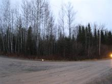 Lot for sale in Gaspé, Gaspésie/Îles-de-la-Madeleine, Avenue  Rooney, 11227296 - Centris