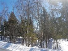 Lot for sale in Sainte-Agathe-des-Monts, Laurentides, Rue  Godon Ouest, 13225663 - Centris