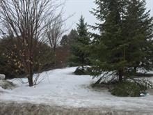 Lot for sale in Gatineau (Gatineau), Outaouais, 838B, Rue  Notre-Dame, 12729613 - Centris