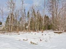 Lot for sale in Jacques-Cartier (Sherbrooke), Estrie, Rue  Alexandre-Dumas, 19520925 - Centris