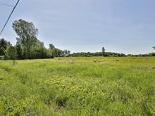 Terrain à vendre à Henryville, Montérégie, Rue  Champlain, 27163673 - Centris