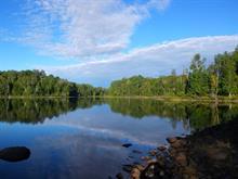 Terrain à vendre à Amherst, Laurentides, Chemin du Lac-Long, 16567093 - Centris