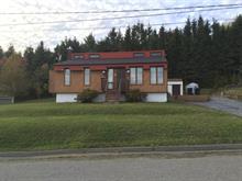 House for sale in Dégelis, Bas-Saint-Laurent, 206, 2e Rue Est, 15826510 - Centris