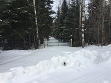 Lot for sale in Arundel, Laurentides, Chemin  Twin-Lake, 18366981 - Centris
