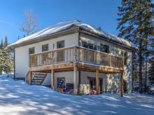 House for sale in Saint-Donat, Lanaudière, 465, Chemin du Domaine-R.-Lavoie, 21431028 - Centris
