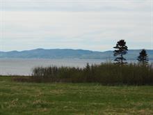 Terrain à vendre à Gaspé, Gaspésie/Îles-de-la-Madeleine, boulevard de Douglas, 21999444 - Centris