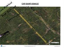 Terre à vendre à Cap-Saint-Ignace, Chaudière-Appalaches, Route  Collin, 25701598 - Centris