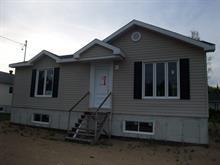 Maison à vendre à Saint-Raymond, Capitale-Nationale, 54, Rue  Fiset, 10340682 - Centris